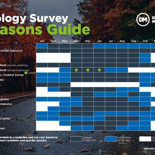 Ecology Survey season is starting…