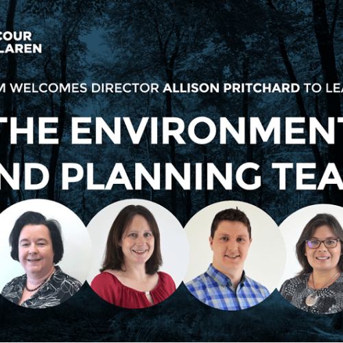 DM welcomes new Director, Allison Pritchard and the Environment and Planning team